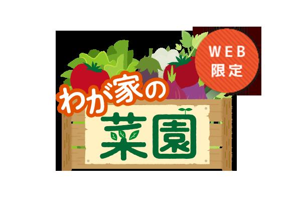 WEB限定 わが家の菜園