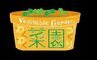 わくわく菜園づくり